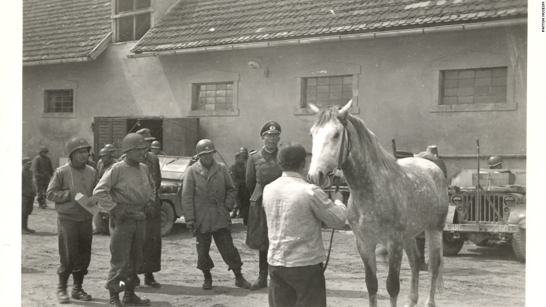 A horse among those captured by Nazis is inspected by American Colonel Hank Reed at the stables in Hostau at the end of April 1945.