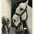 hank reed rescued lipizzaner