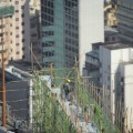 01 hong kong bamboo