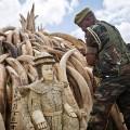 01 kenya ivory burn