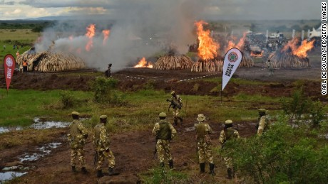 Kenya Wildlife Services rangers stand guard around illegal stockpiles of burning elephant tusks, ivory figurines and rhinoceros horns at the Nairobi National Park April 30.