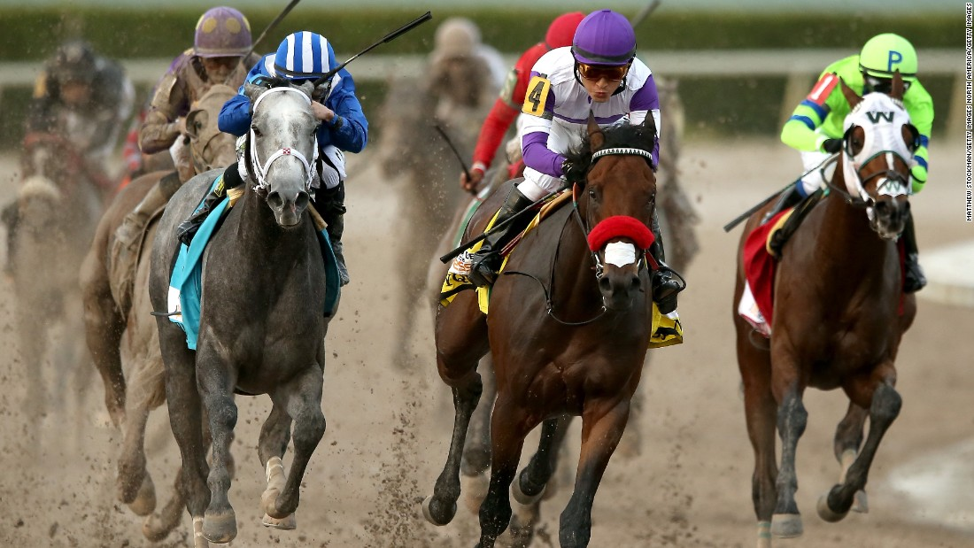 Nyquist #4, ridden by Gutierrez, leads Mohaymen #9, ridden by Junior Alvarado, out of turn four during the 2016 Florida Derby at Gulfstream Park April 2, 2016 in Hallandale, Florida.