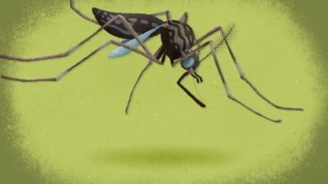 cnnee pkg matute como prevenir el zika_00022230