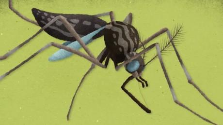 cnnee pkg matute como prevenir el zika_00022220