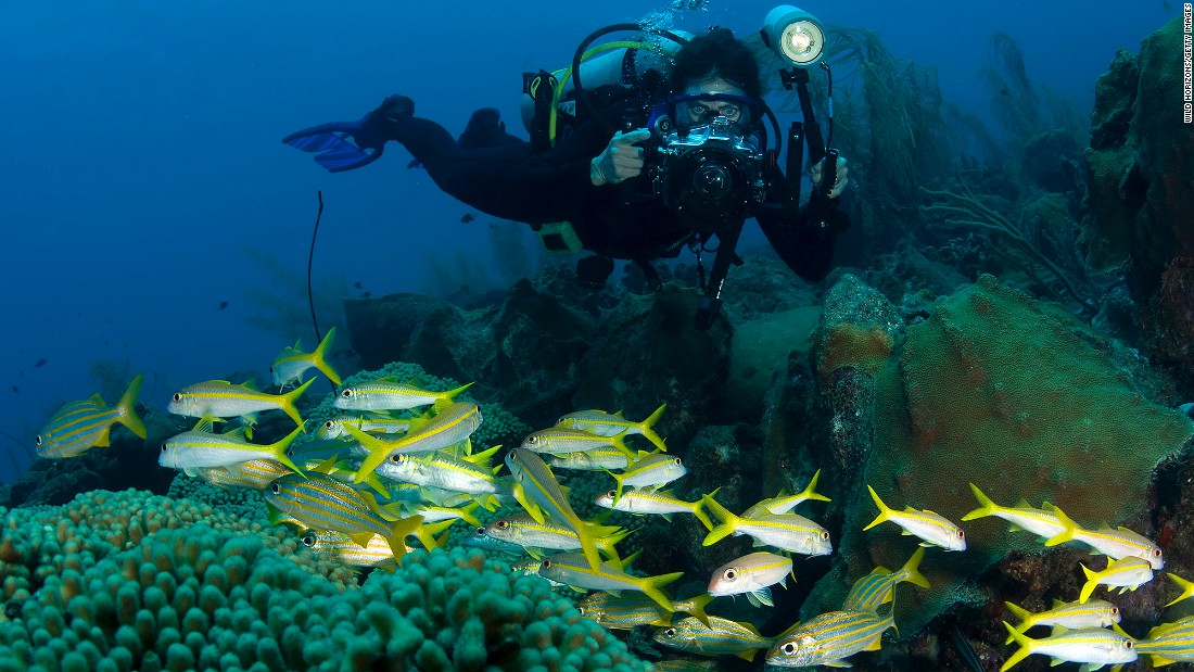 For travelers reluctant to suit up for scuba diving, Curaçao offers mini submarine excursions operated by Substation Curaçao.