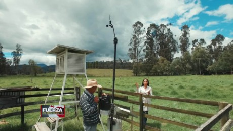 cnnee promo web fuerza en movimiento colombia flores frias canal clima_00000314