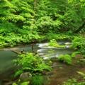 tohoku aomori towada national park