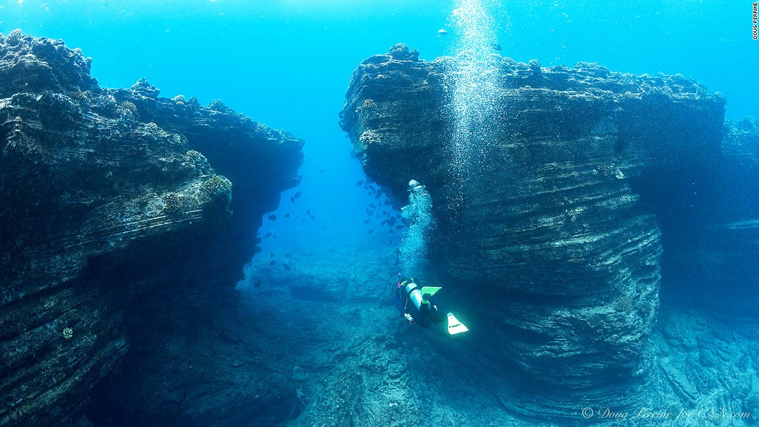 Restrictions on access and remote location off Kauai have kept the fabled reefs around Ni'ihau off the radar. But experienced hands say the diving is some of the best in Hawaii.