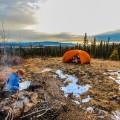 13 montana to alaska