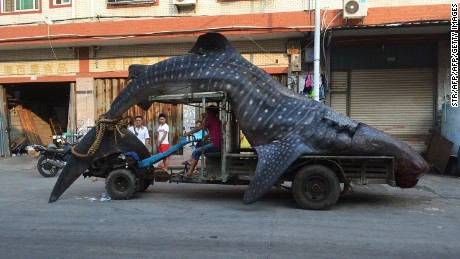 "Fisherman in Fujian claimed to have thought this whale shark was a ""sea monster."""