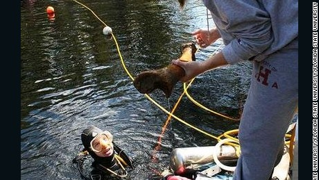 Divers excavated bones and tools from the Page-Ladson, which is 30 feet underwater in the Aucilla River