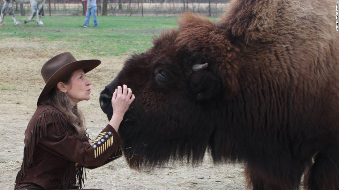 East Texas Craigslist Personal >> Housebroken bison sold on Craigslist, finds new home - CNN.com