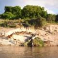 botswana ecotourism marketplace africa spc_00013708