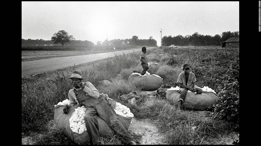 Cotton pickers in South Carolina sit on piles of cotton in 1962.