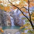 Tohoku Torigoe-no-taki Falls