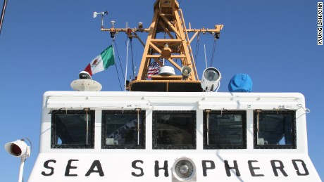 The Sea Shepherd is an environmental group's ship fighting fish bladder smuggling.