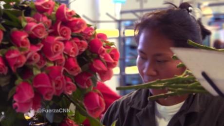 cnnee seg a for web fuerza en movimiento colombia flores gabriela frias_00025405