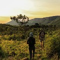 Marataba-walking-trail