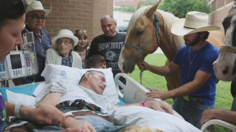 Dying veteran says goodbye to beloved horse