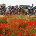 05 Giro d'Italia 2016