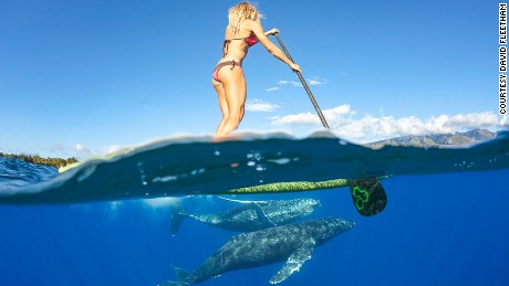 RESTRICTED -- Paddleboarder by David Fleetham