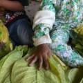 hrw indonesia tobacco children 2