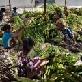 hrw indonesia tobacco children 5