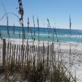 06_Grayton Beach State Park Florida Panhandle