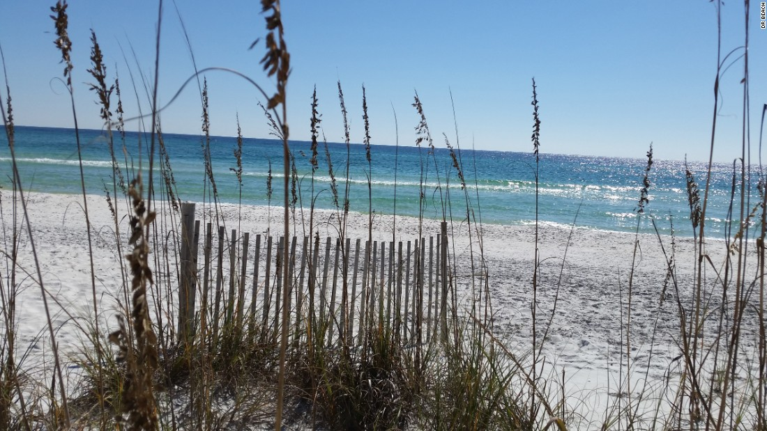 Development has been restrained at Grayton Beach State Park on the Florida panhandle, so the white sand dunes still dominate the landscape.