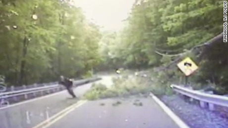 police officer hit falling tree dashcam_00003617