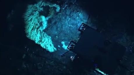 massive deep sea sponge discovery emarticke orig_00003405