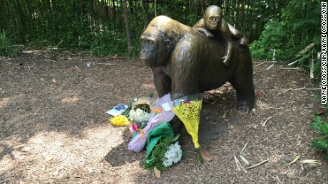 Well-wishers left flowers by the gorilla statue at the Cincinnati Zoo.
