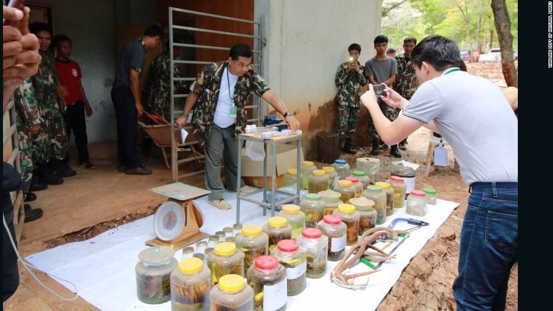 Thai wildlife and conservation officials display more animal parts found at the controversial Buddhist temple on June 2.