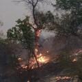 03.calabasas fire 0605