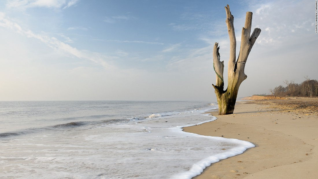 "Photographer <a href=""https://andrewstawarz.carbonmade.com/"" target=""_blank"">Andrew Stawarz</a> captured this image of a weather-beaten dead tree poking out of the sand at Covehithe Beach on England's east coast."