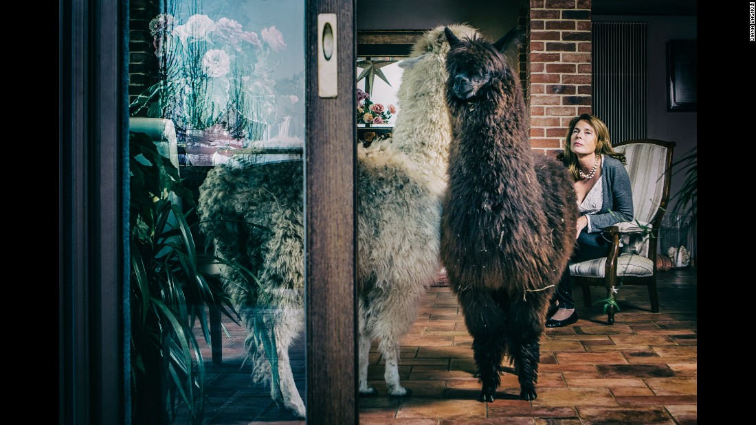 Monica Balestra lives with alpacas in Mondovi, Italy. They have lots of open space to roam, Bagnoli said.