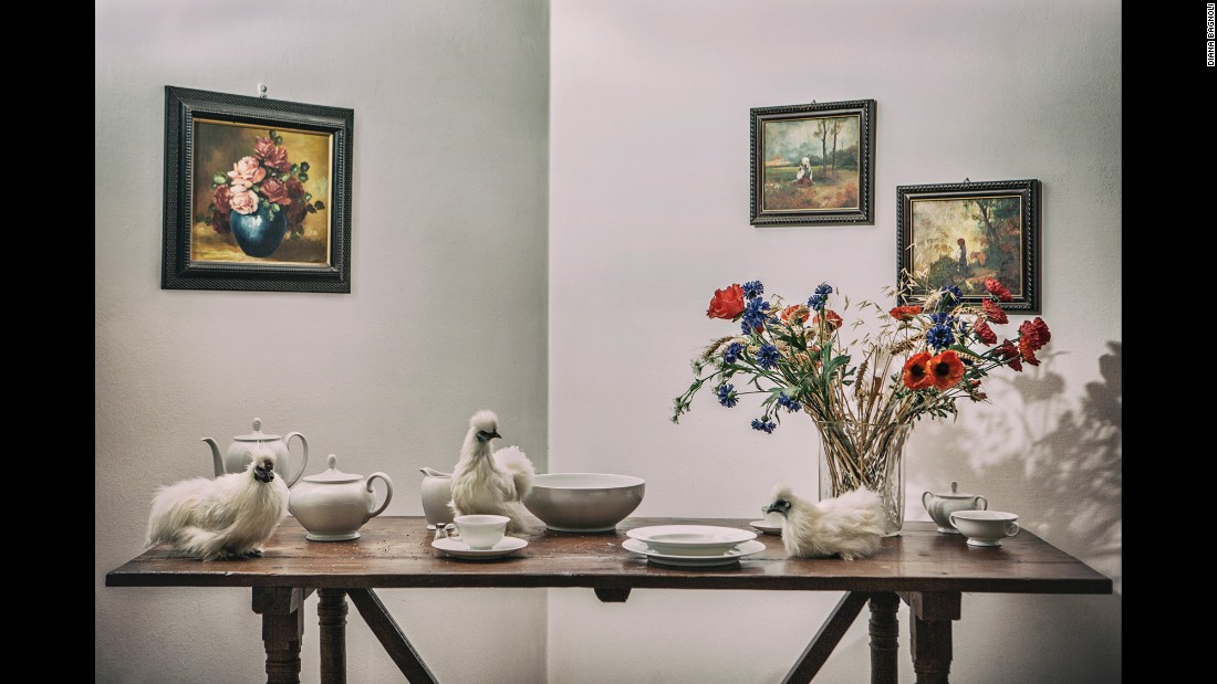 Ornamental chickens sit on a table at Chiara Sgambati's home in Pavia, Italy.