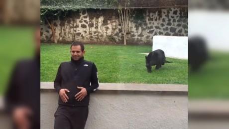 cnnee cafe vo pantera cariñosa mexico director de santuario _00000307
