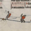 medieval killer rabbits 12
