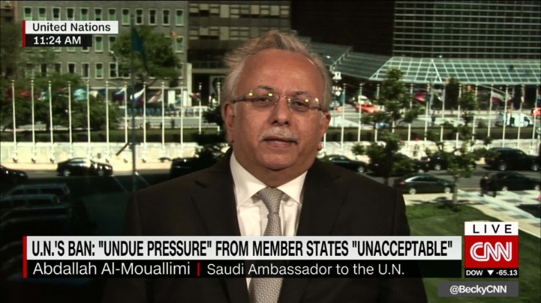 mouallimi saudi pressure yemen un intv ctw_00014316