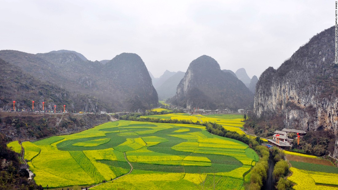 Rapeseed oil fields bloom amongst Guizhou's karst hills near the city of Anshun.