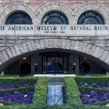 world top 20 museums 2016 AMNH