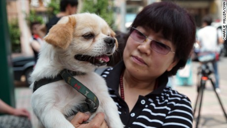 A Chinese dog lover and her dog was amogn a small number of animal rights activists that handed in a petition protesting the Yulin Dog Meat festival at government offices in Beijing on June 10 2016