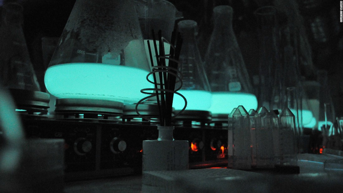 Bioluminescence is a chemical reaction within cells, which makes living organisms produce light. Inspired by real-life glow-in-the-dark sea creatures, Glowee's technology is made using natural properties found in marine micro-organisms.