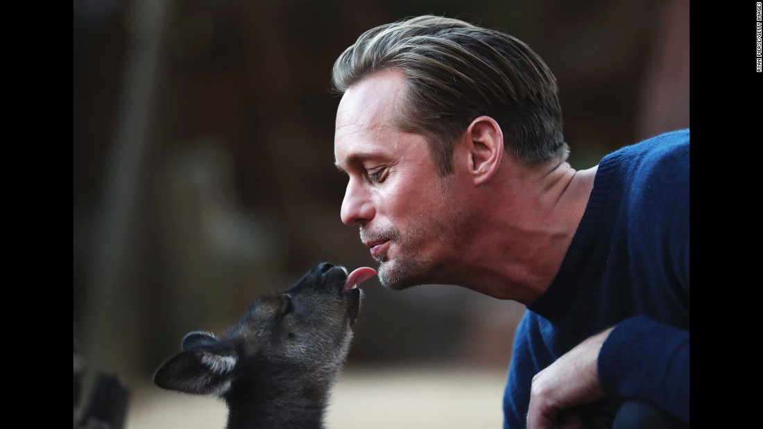 "Actor Alexander Skarsgard kisses a baby kangaroo during a photo call in Sydney for his new film, ""The Legend of Tarzan,"" on Tuesday, June 14."