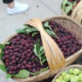 China Guizhou food berries