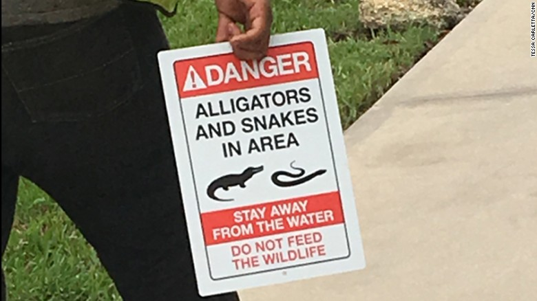 Disney puts up new alligator warning signs