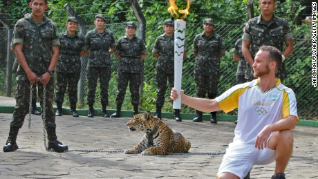 Jaguar killed during Olympic event