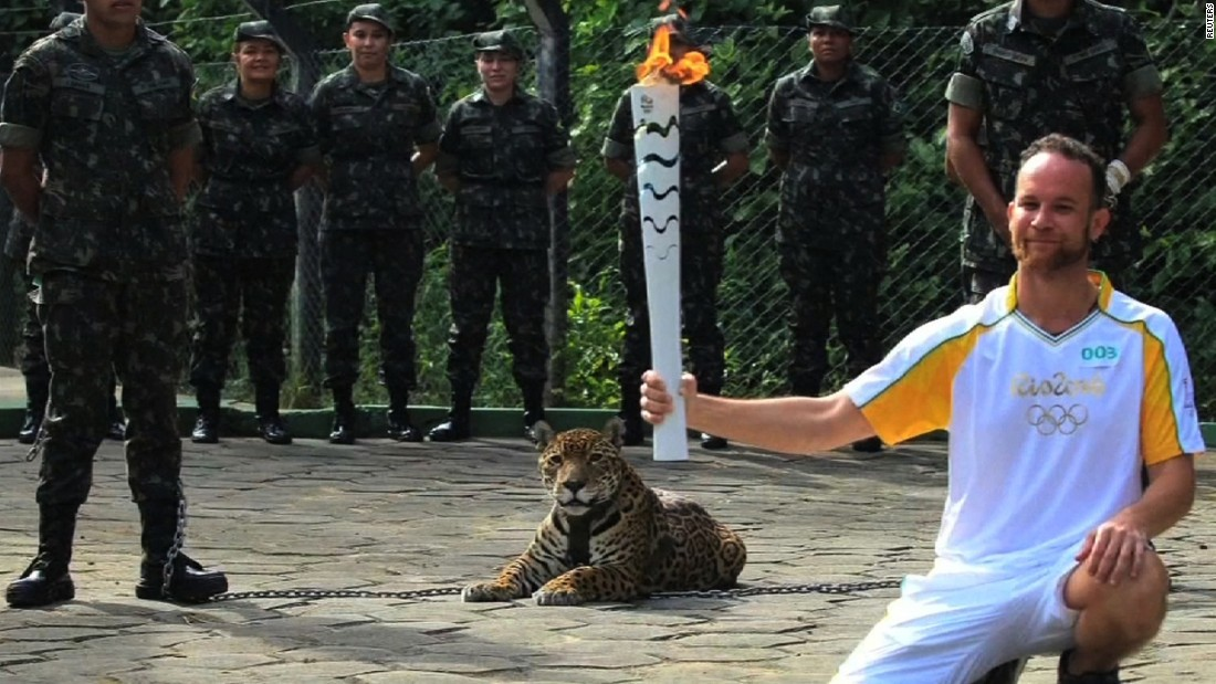 "But the relay has not been without controversy. An Amazonian jaguar was <a href=""http://edition.cnn.com/2016/06/21/americas/brazil-jaguar-shot-dead/"">shot dead</a> shortly after participating in Olympic torch relay event in June. According to the Brazilian military, the jaguar escaped its handlers and attacked a soldier before it was killed."