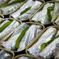 15 sardines 2 GettyImages-459683280